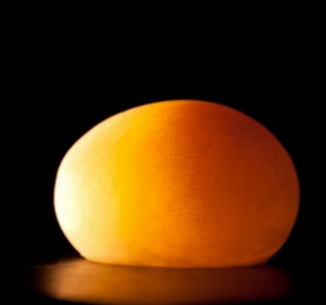 The Naked Egg