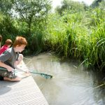 top 5 days out sussex fun science