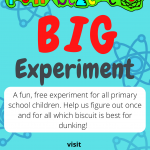Big experiment flyer