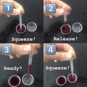 Pipette instructions